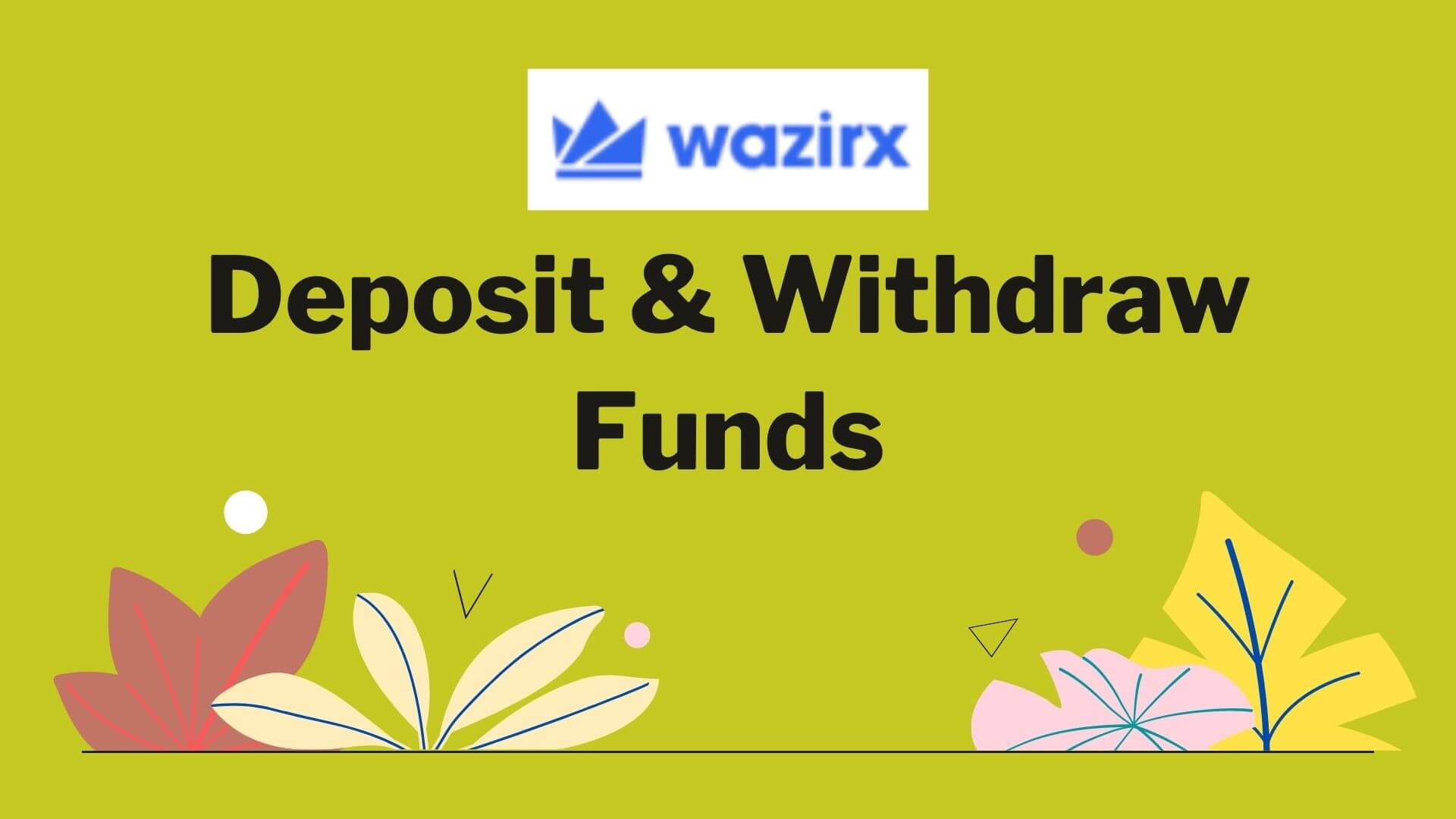 WazirX Deposit and Withdraw Funds