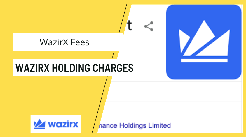 WazirX Holding Charges